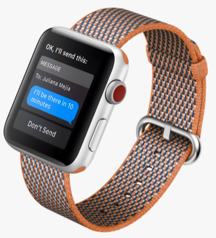 gift guide Apple Watch