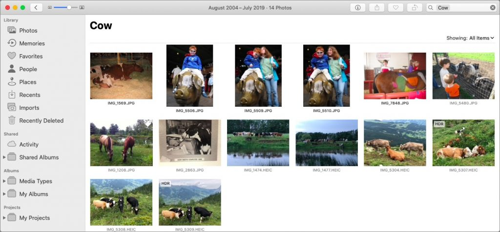 Photos object search cow 1024x476